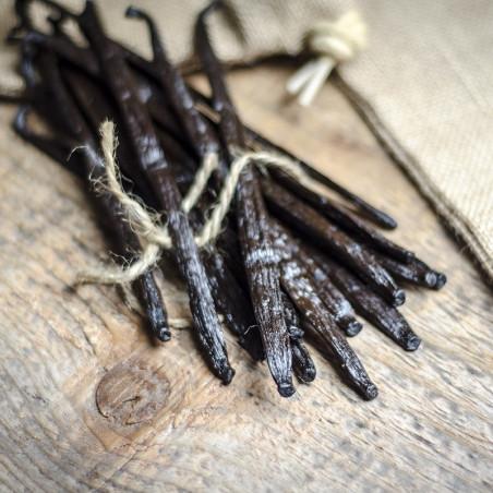 Ugandan Vanilla Beans - Grand Cru