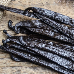 10 Grand Cru Vanilla Beans +14cm M - Uganda