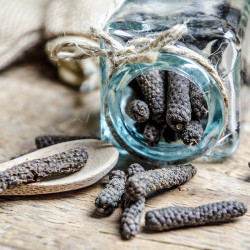 Java Long Pepper - Indonesia