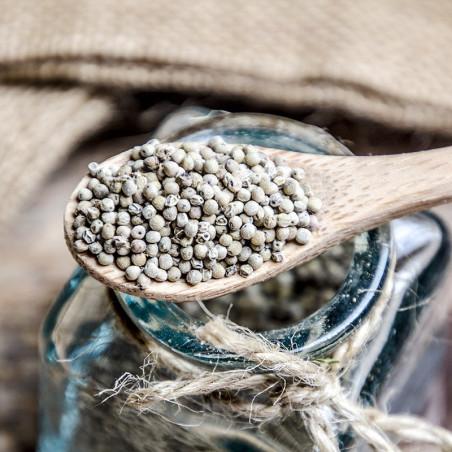 Perles de Poivre Long de Kâmpôt - Cambodge