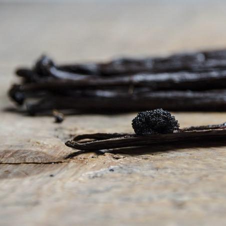 Vanilla Tahitensis Gourmet - Papua New Guinea