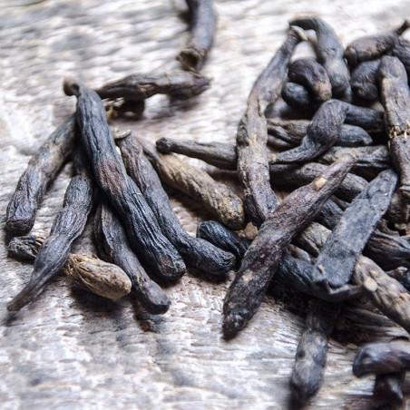 Selim Pepper - Ivory Coast