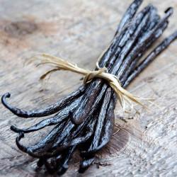 10 Bourbon Gold Vanilla Beans 14-15cm M - Madagascar