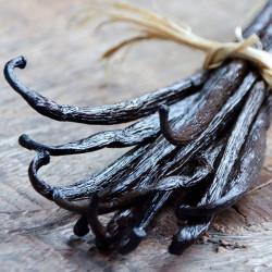 Gousses de Vanille Bourbon Gold de Madagascar +14cm - David Vanille : Vente de gousses de vanille et épices d'exception.