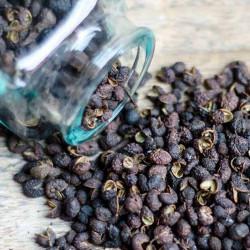Timut Pepper - Nepal