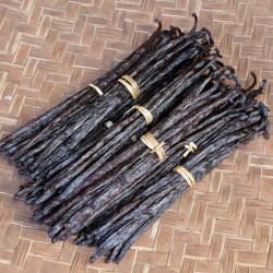 10 Bourbon Vanilla Beans Gold 20-22cm XXL - Madagascar