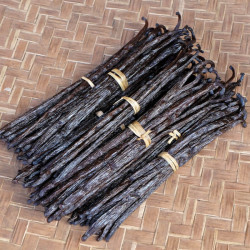 Bourbon vanilla beans +20cm XXL - Madagascar