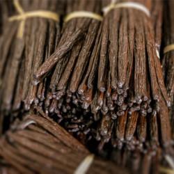 Bourbon Gold vanilla beans 500g - Madagascar
