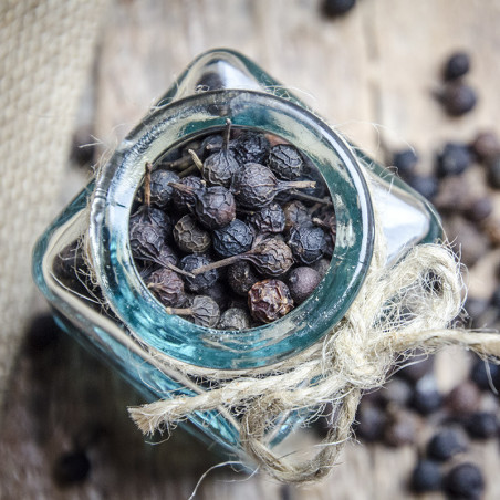 Poivre Cubèbe - Indonésie - David Vanille : Vente de poivres rares