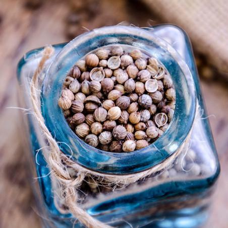 Coriandre en Graines - Asie