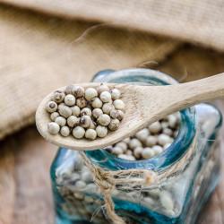 Poivre Blanc de Penja - Cameroun - David Vanille : Vente de poivres rares