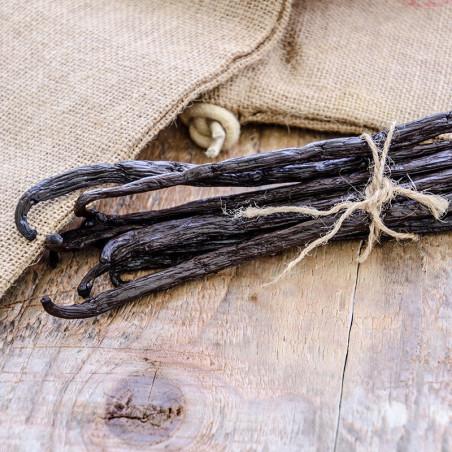 Vanille Bourbon 14cm - Madagascar - 3 gousses