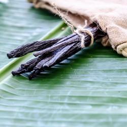 Gousses de Vanille Veracruz - Mexique