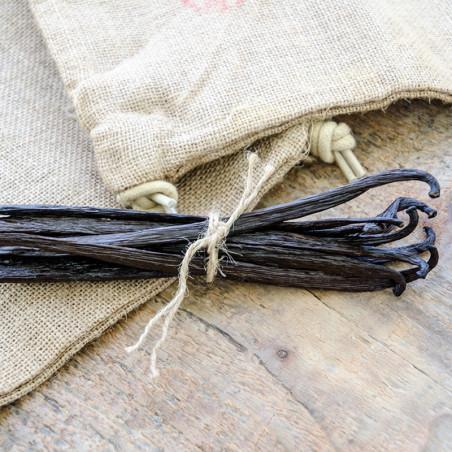 10 gousses de Vanille Veracruz - Mexique