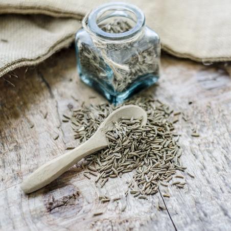 Carvi Noir en Graines - Egypte