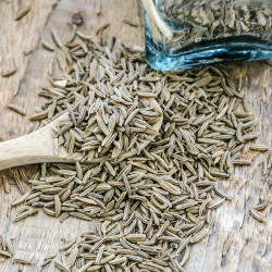 Black Caraway Seed - Egypt