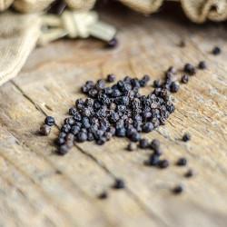 Black pepper - Timor Oriental