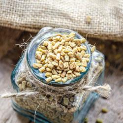 Fenugreek Ayurveda Seeds