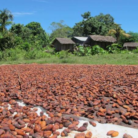 Cocoa beans -...