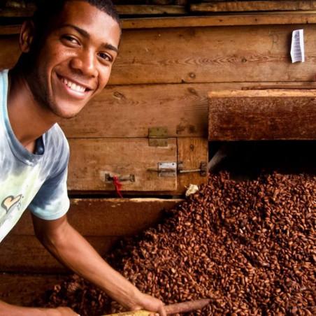 Fèves de Cacao - Trinitario