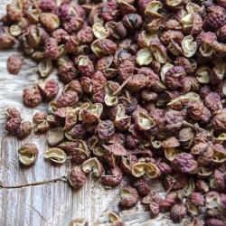 Poivre Sichuan Rouge – Chine - David Vanille : Vente de poivres rares