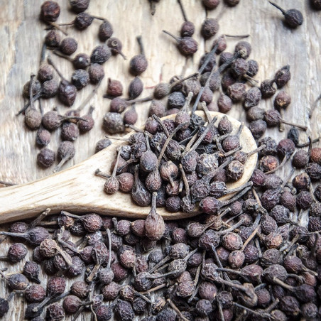 Red Wild Pepper - Voatsiperifery - Madagascar