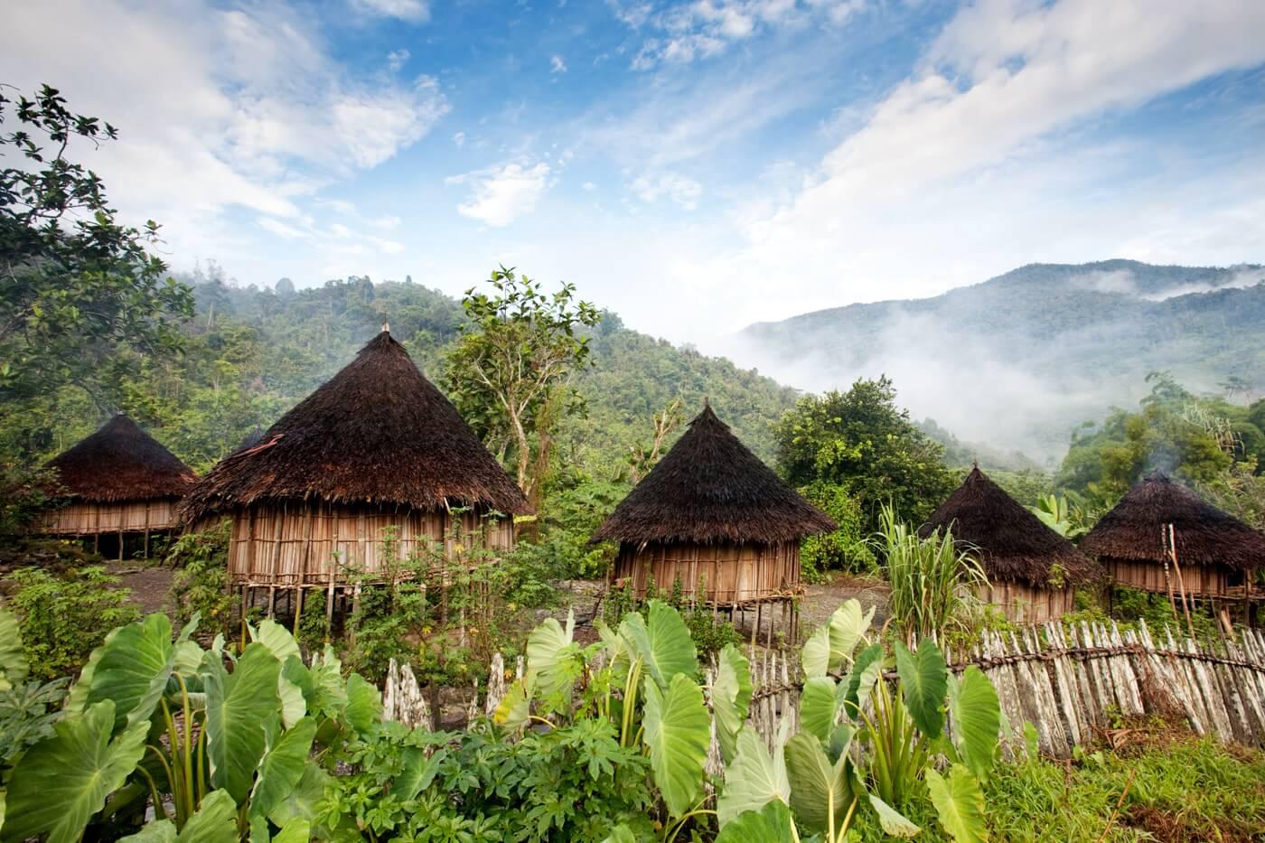 vanille-de-papouasie-village