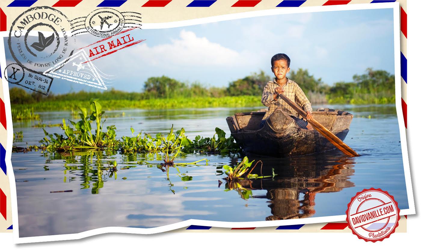perles-poivre-long-kampot-cambodge