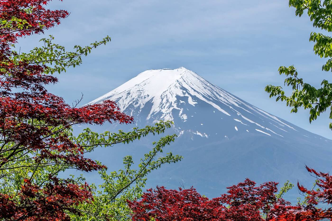 shichimi-togarashi-du-japon