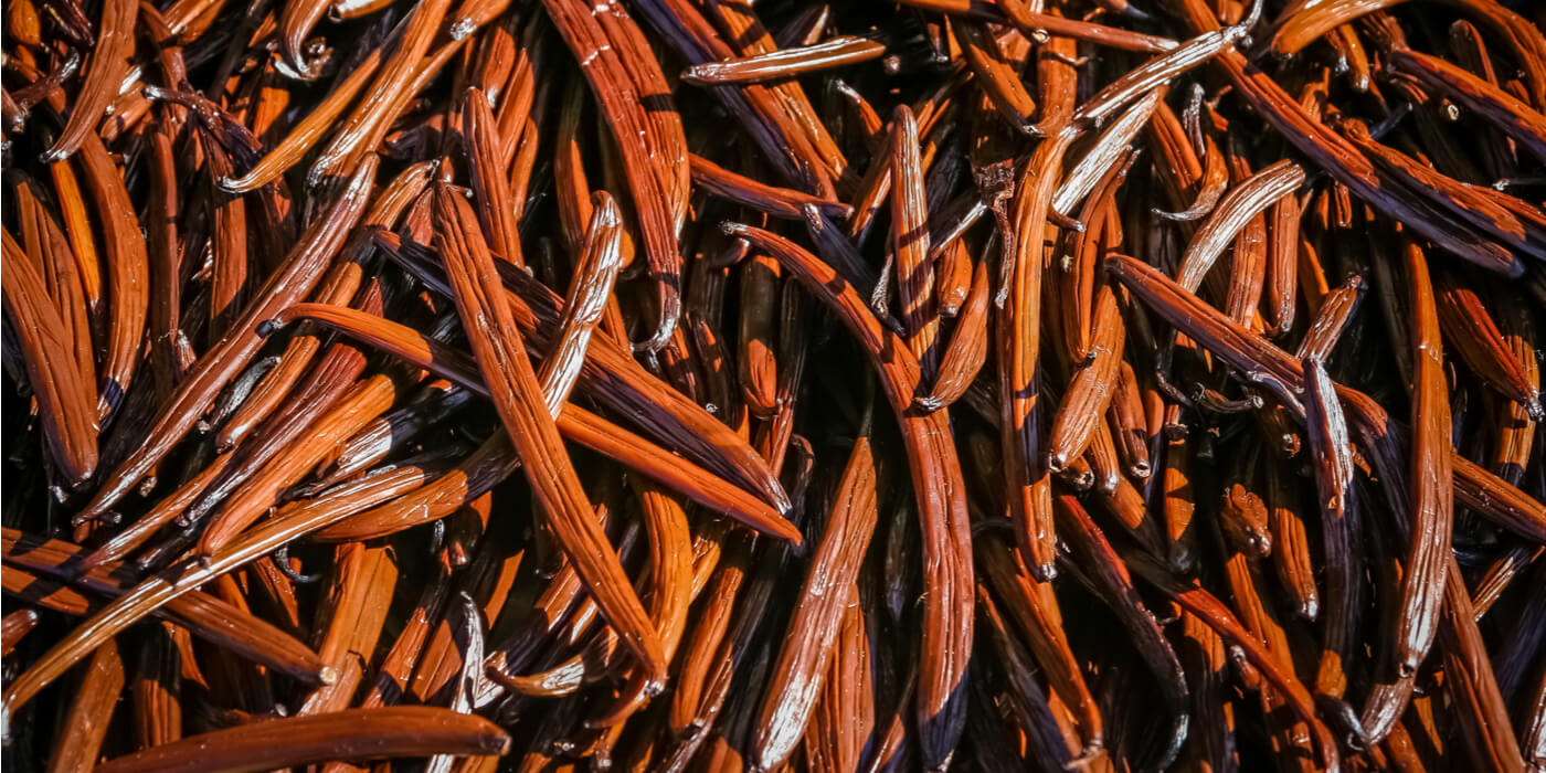 vanilla-beans-from-papua-new-guinea