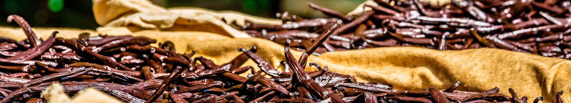 SPECIAL OFFERS - Vanilla Beans and Spices